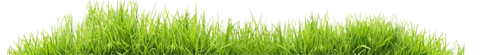grass-footer1
